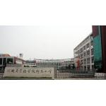 河南省实验学校郑东小学照片