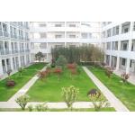 扬州梅苑双语学校照片